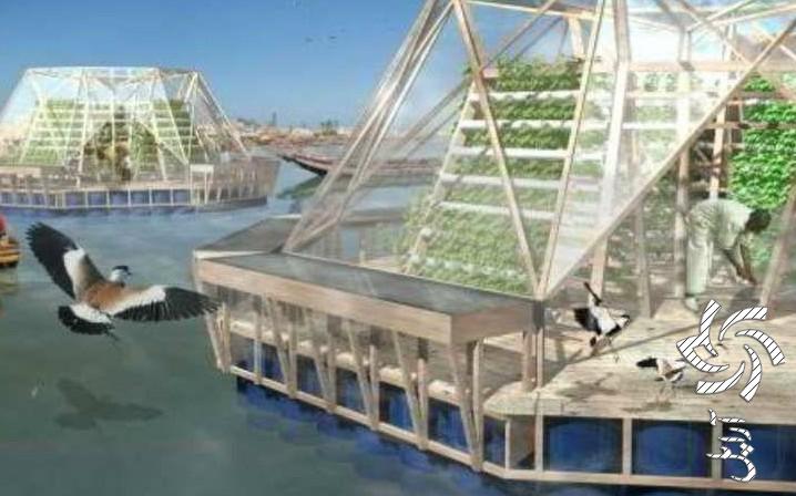 با استفاده از انرژی تجدید پذیر؛ گلخانه دریایی در جنوب کشور احداث میشود!برق خورشیدی سولار