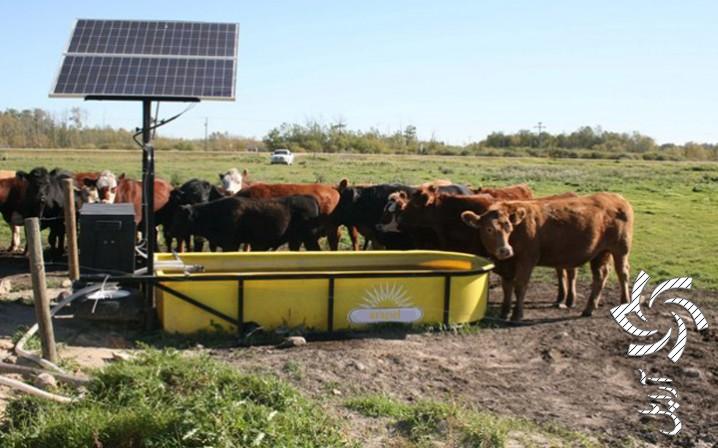 پکیج برق خورشیدی مناسب دامداری برق خورشیدی